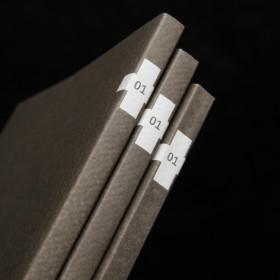 Almanacco<span>book</span>