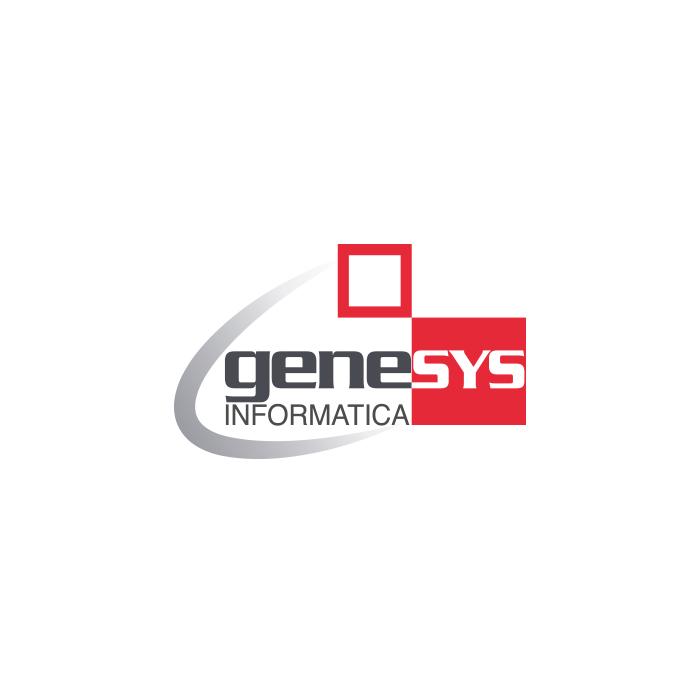 genesys-informatica