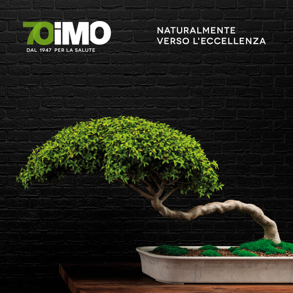 imo 70th anniversary logo and advertising